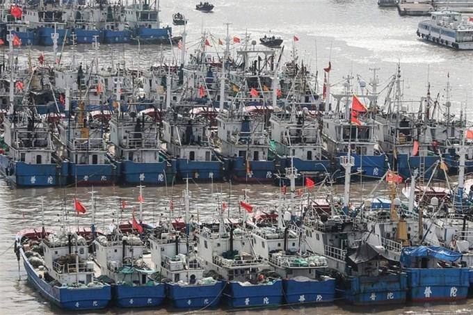 Hàng trăm tàu cá Trung Quốc chuẩn bị ồ ạt xuống Biển Đông