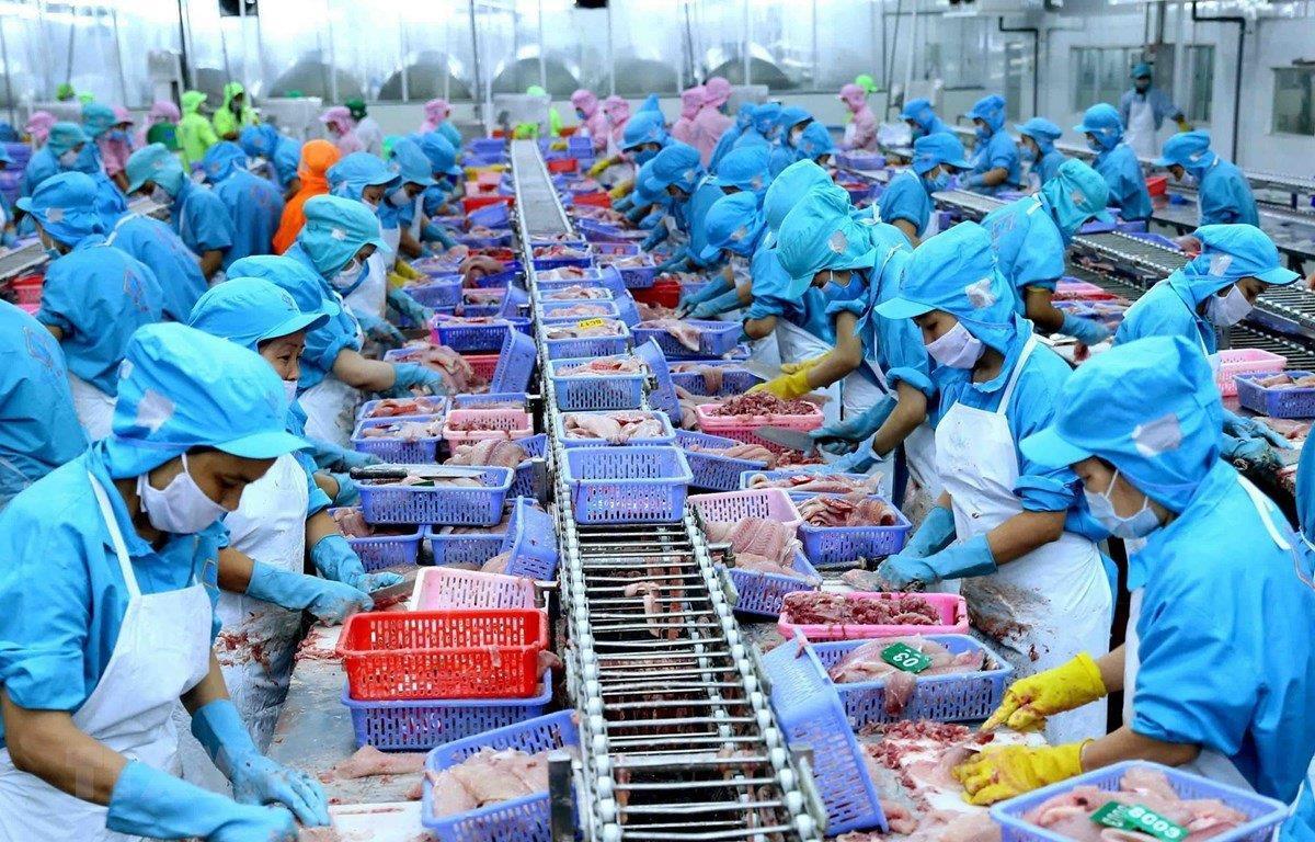 Đưa Việt Nam trở thành trung tâm chế biến thủy sản - 1
