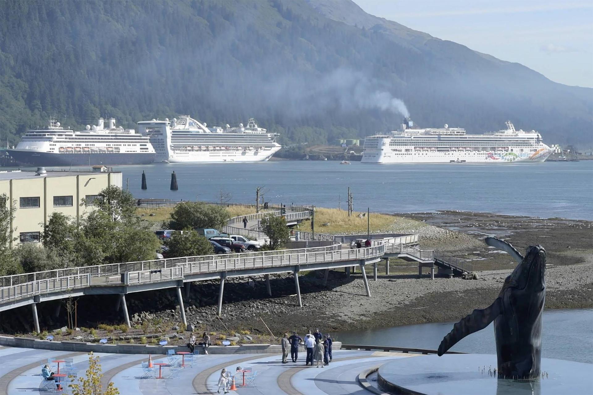 Vắng du khách, cá voi Alaska hạnh phúc hơn bao giờ hết - 2