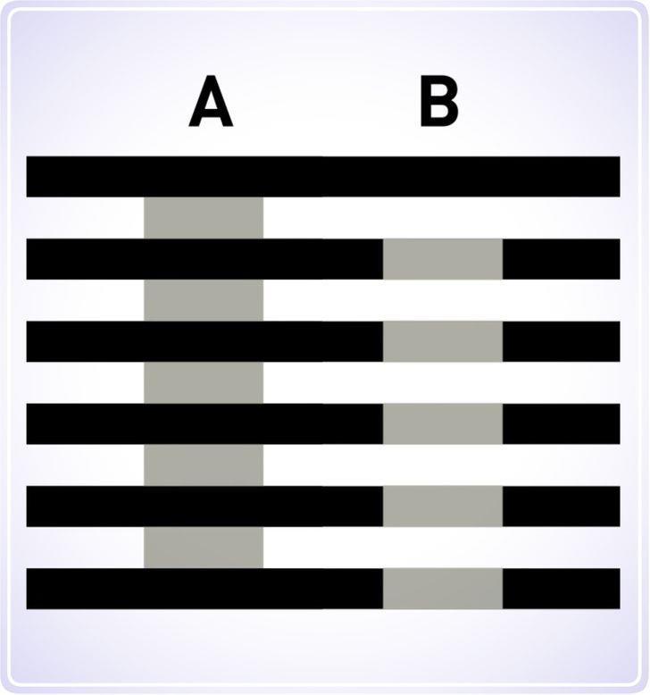 Loạt câu đố ảo ảnh quang học dưới đây có làm khó bạn? - 5