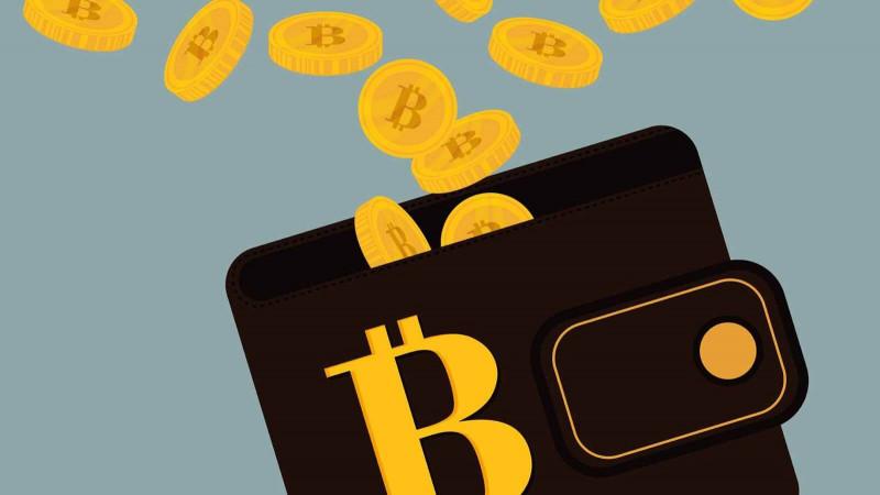 Giúp khách hàng tìm lại mật khẩu ví Bitcoin, hai cha con lập trình viên chạm tay vào kho vàng ảo 4,7 tỷ USD - Ảnh 2.