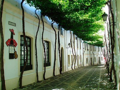 Ngắm những dãy phố tuyệt đẹp ngỡ như lạc vào xứ sở cổ tích - 11
