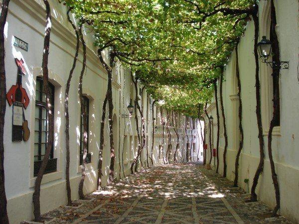 Ngắm những dãy phố tuyệt đẹp ngỡ như lạc vào xứ sở cổ tích - 13