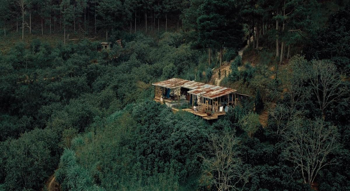 4 quán cà phê ẩn trong rừng Đà Lạt - 1