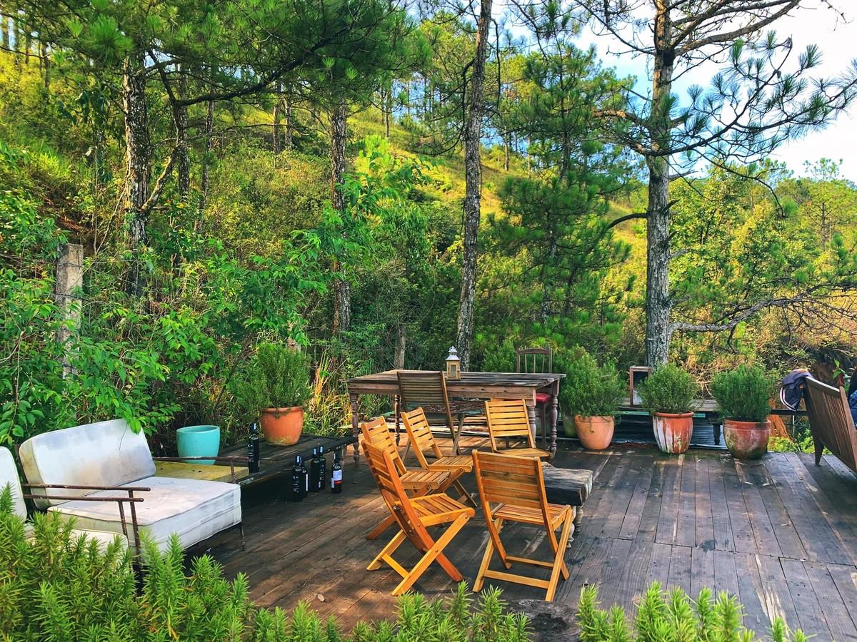 4 quán cà phê ẩn trong rừng Đà Lạt - 8