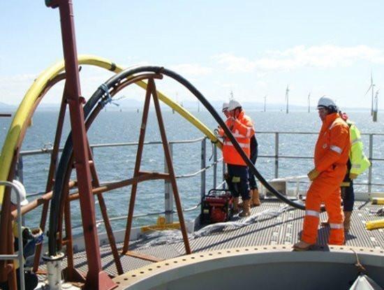 Đã có lịch khắc phục sự cố trên tuyến cáp quang biển AAE-1