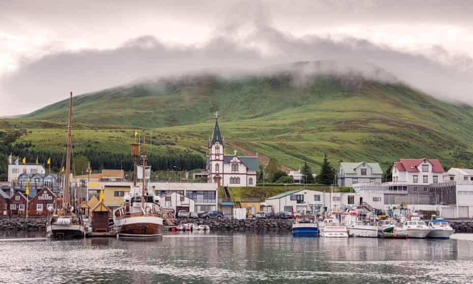 Tour độc đáo ngắm cá voi bảo vệ môi trường ở Iceland - 4