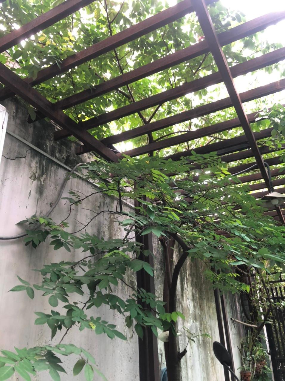 Kỉ niệm đáng nhớ với gia đình nhà thơ Nguyễn Bính - 3