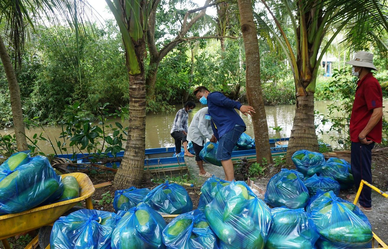 Dành tặng cả vườn rau, cây trái hỗ trợ những người khó khăn mùa dịch - 4