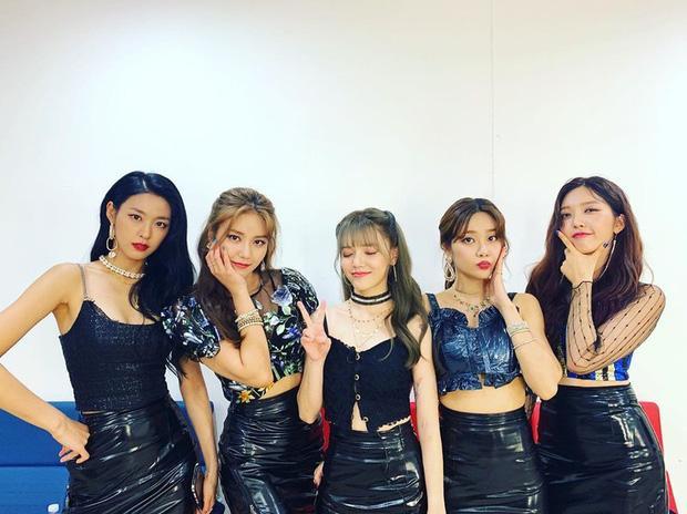 Mina và Hwayoung: Bộ đôi mang tiếng trà xanh - rắn độc hủy hoại tương lai của nhóm-2