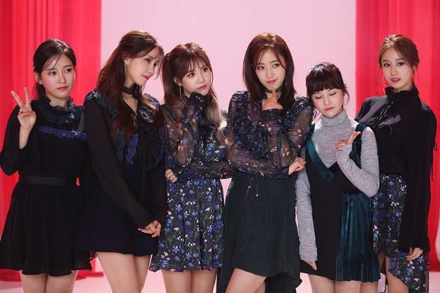 Mina và Hwayoung: Bộ đôi mang tiếng trà xanh - rắn độc hủy hoại tương lai của nhóm-6