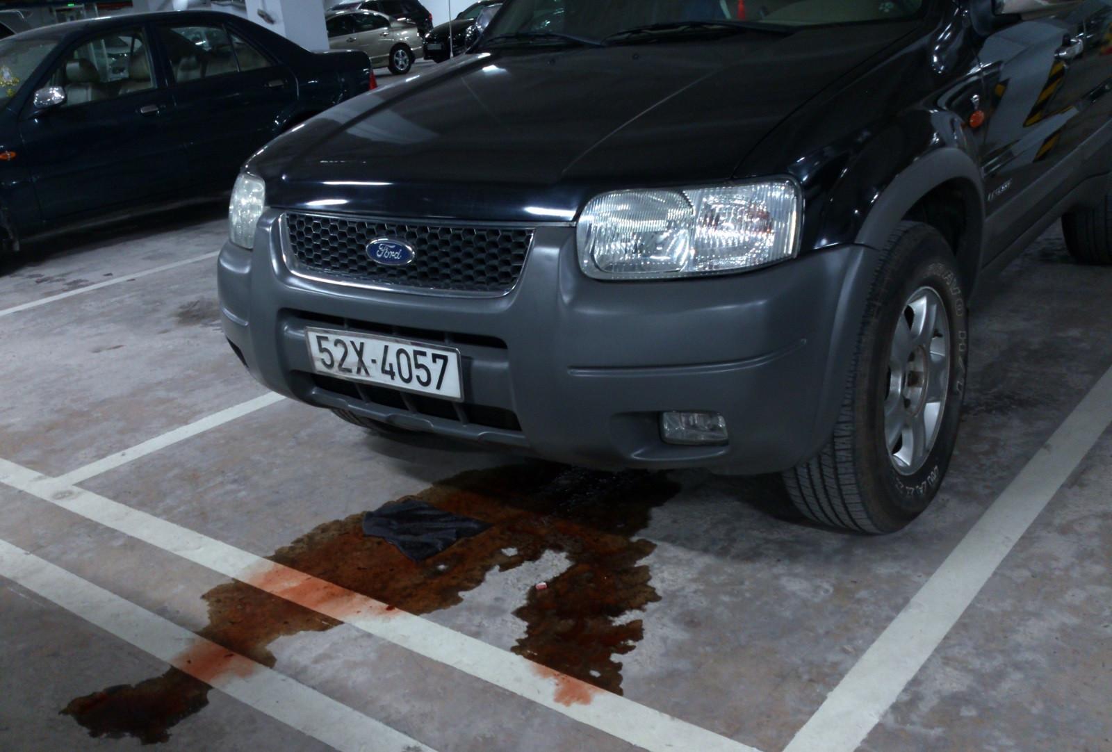 dầu xe ô tô