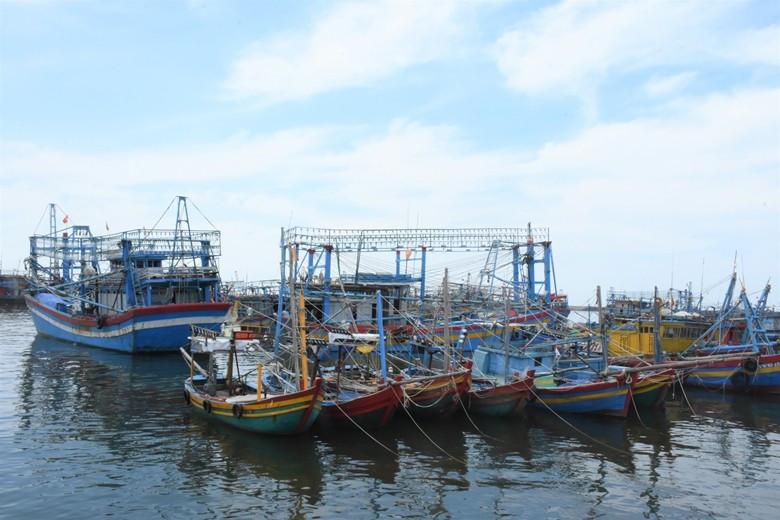 Tàu ghe tại cảng cá Bình Châu (huyện Xuyên Mộc) sẵn sàng vươn khơi đánh bắt hải sản (Ảnh: Báo Bà Rịa- Vũng Tàu)