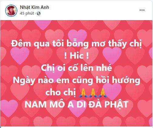 Sức khỏe Phi Nhung chuyển xấu, sao Việt đồng loạt cầu nguyện-4