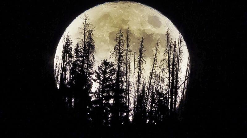 Đến Nga săn Bắc cực quang - Ánh sáng kỳ diệu đến từ bầu trời - 12