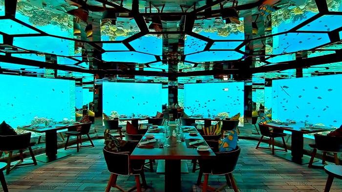 Ăn tối dưới đại dương và những trải nghiệm độc đáo chỉ có khi du lịch Maldives - 6