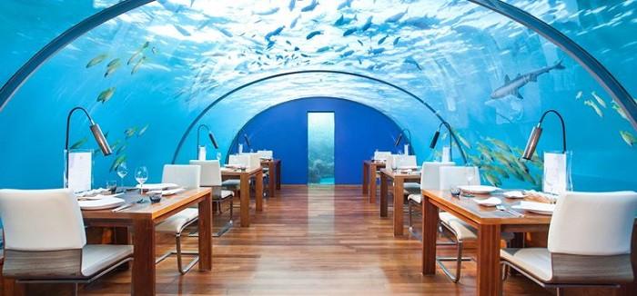 Ăn tối dưới đại dương và những trải nghiệm độc đáo chỉ có khi du lịch Maldives - 7