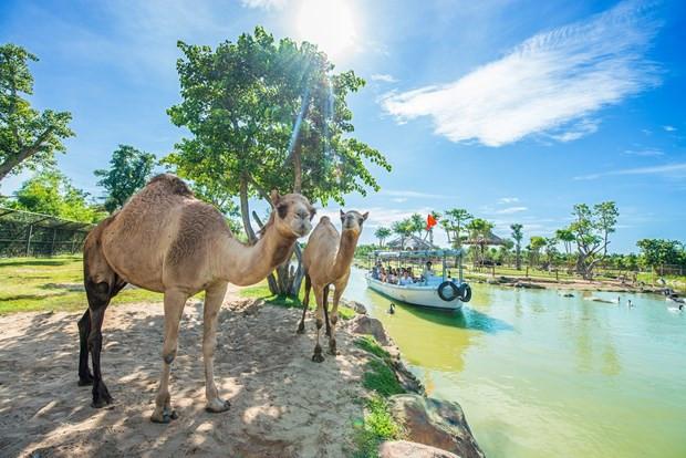 'Kết nối xanh' để sớm khôi phục thị trường du lịch nội địa - 2