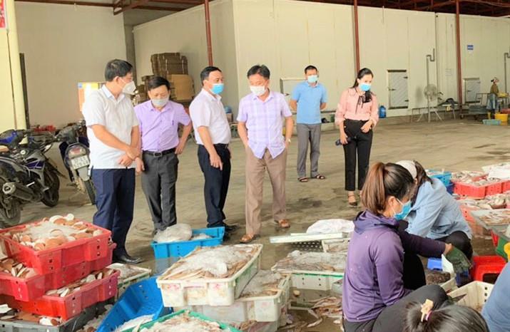 10.000 tấn hải sản ế ẩm, Nghệ An kêu gọi 'giải cứu' - 1