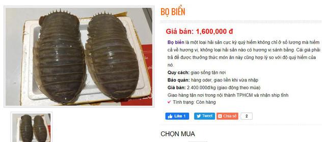 Việt Nam có loại hải sản mệnh danh xe tăng lội nước, giá bán 1,5 triệu đồng/kg, có tiền chưa chắc đã mua được - Ảnh 2.