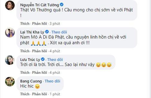 Phi Nhung qua đời, làng showbiz Việt ngập trong nước mắt-8