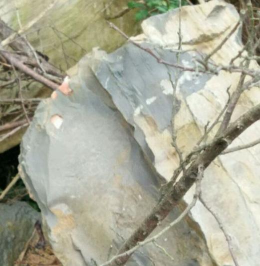 Cuốc đất bất ngờ đụng trúng tảng đá, chàng trai vô tình khám phá bí mật hiếm có bên trong - Ảnh 4.