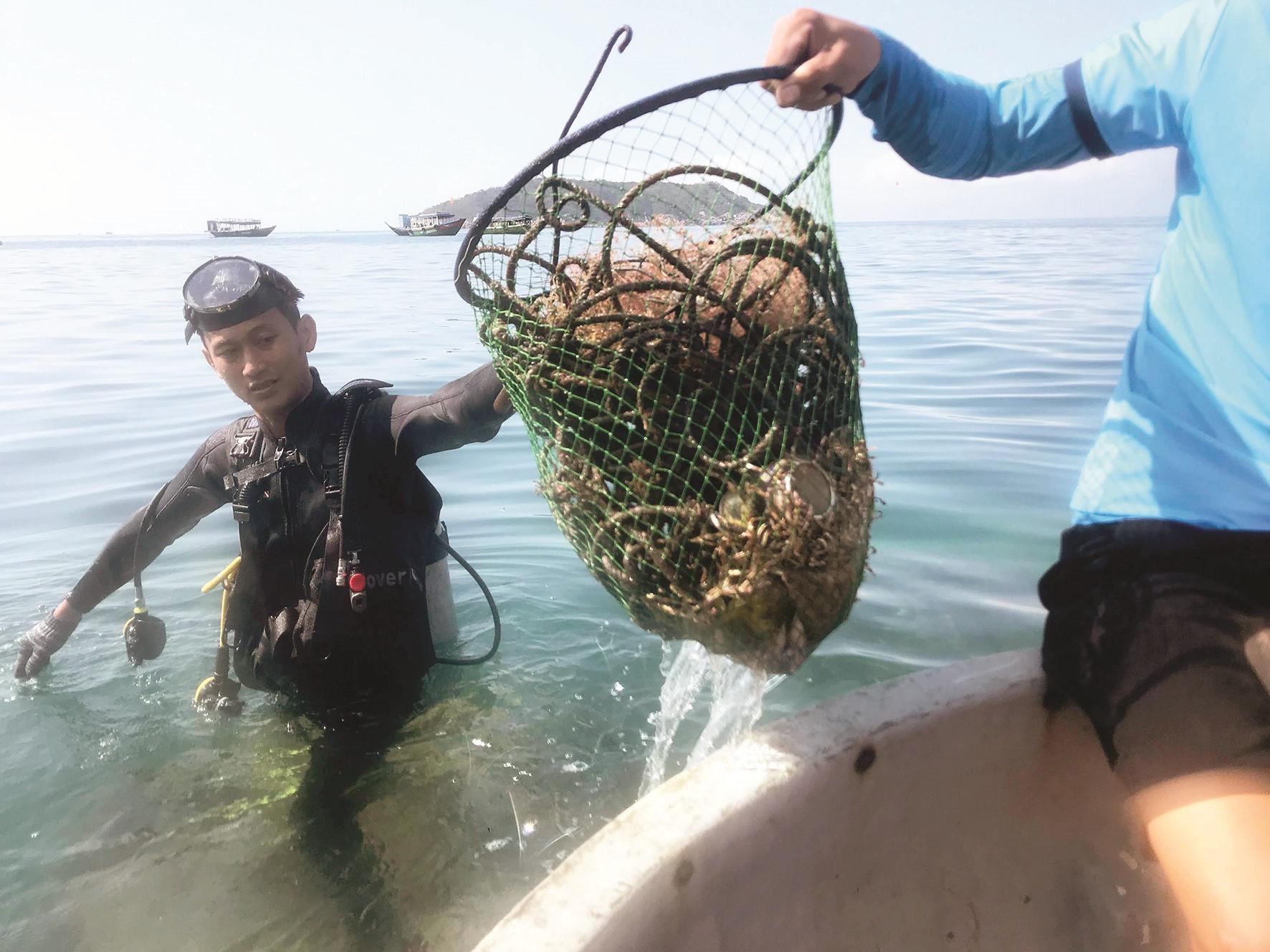 Rác được vớt từ đáy biển.